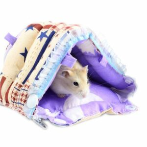 Sitio web de Dropshipping de suministros para mascotas | Sitio web de GARANTÍA | Trabajo a domicilio | Totalmente abastecido