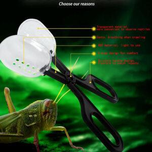 Suministros para reptiles Clips para mascotas trepadoras Alimentación de reptiles Gusanos reproductores de insectos Cl_ws