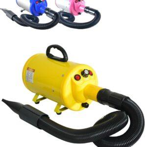 Secador de pelo profesional para mascotas Gravitis Pet Supplies 2800w con manguera: potente ...